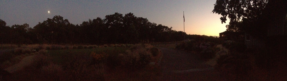As the sun sets and moon rises, it's a glorious Healdsburg evening